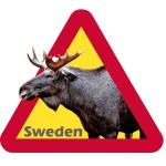 Postkarte Elch im Warnschild